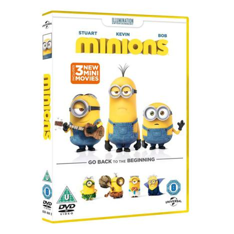 Minions Movie DVD  £14.99